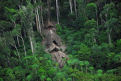Amazonian_Tribe_3_674855c